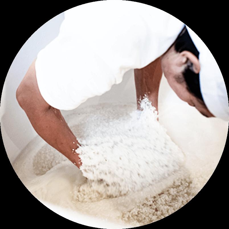 Making Subo (the sake mother)